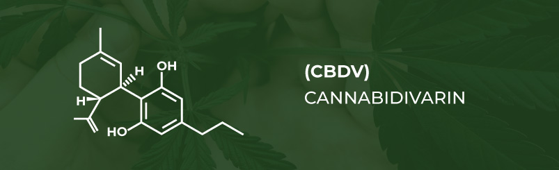 Minor Cannabinoid CBDV